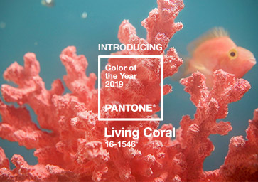 PANTONE Living Coral – Color of the Year 2019
